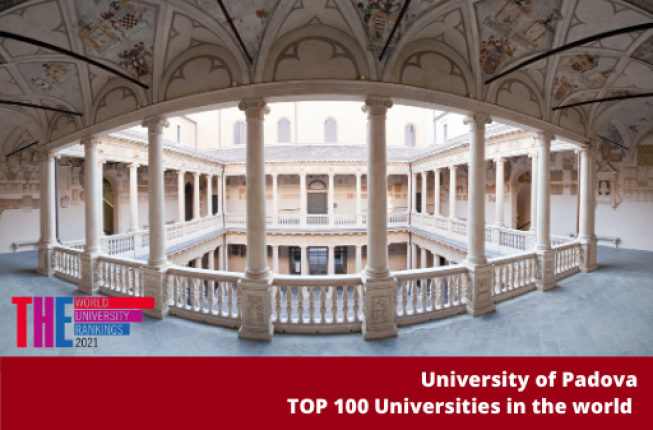 Collegamento a THE Impact Ranking places the University of Padova among the top 100 universities in the world